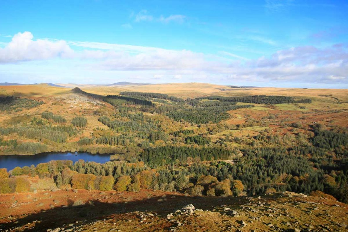 01-Aerial-Dartmoor-Burrator-KT-DNPA-061112-(46)