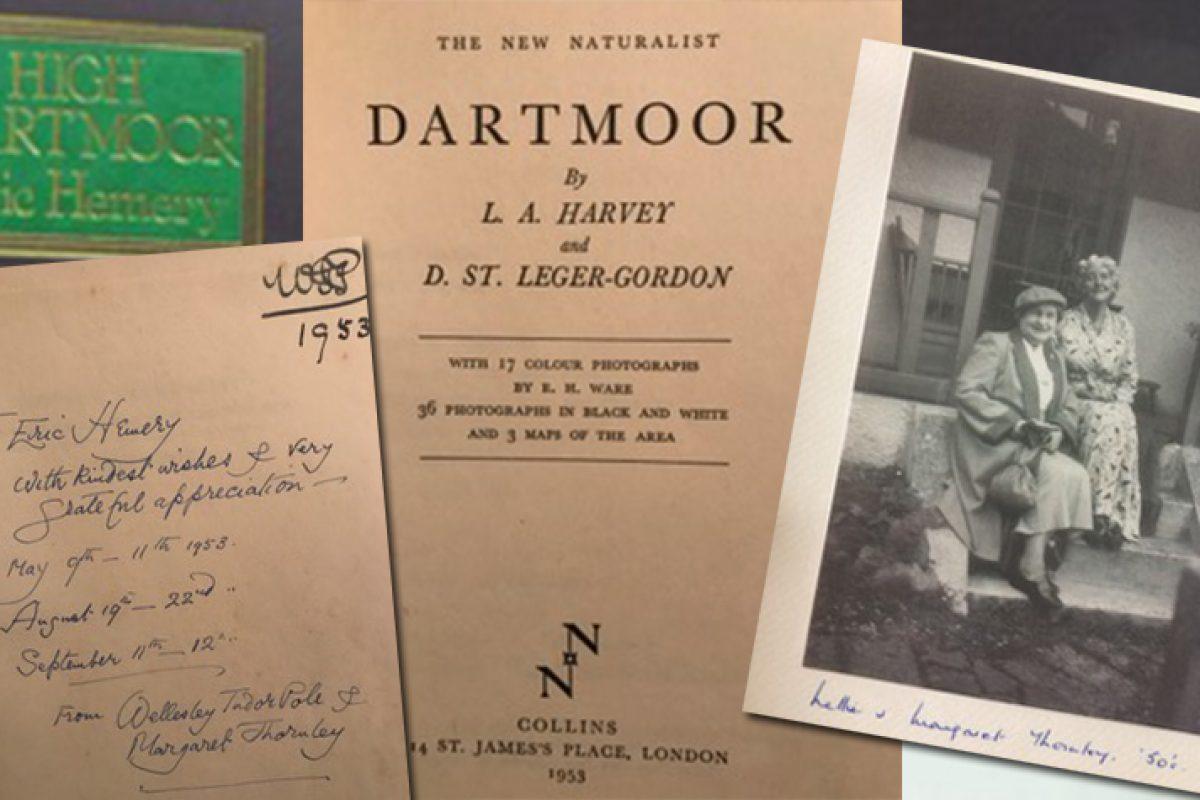 DartmoorsDaughter.jpg_tmp
